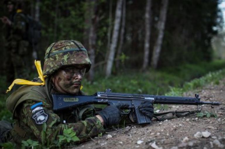Эстонское ополчение возглавил офицер, пообещавший победить Россию