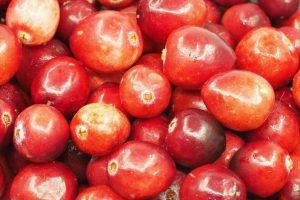 Диетологи определили самый полезный растительный продукт