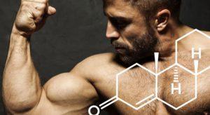 Врач рассказал о неожиданном способе повышения тестостерона