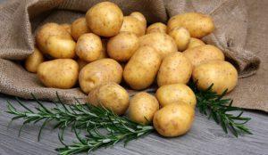 Медики рассказали, что картофель поможет побороть язву